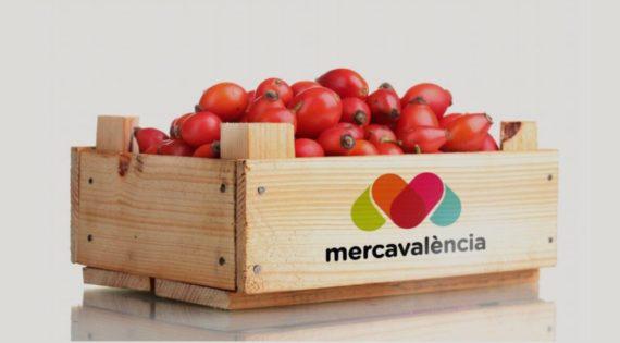 Junta General Ordinaria de los Mercados Centrales de Abastecimiento de València. S.A.