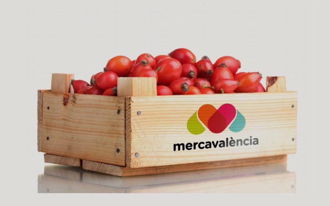 Junta General Ordinària dels Mercats Centrals de Proveïment de València. S. A.