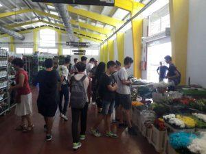 Alumnes de l'IES El Saler, a Mercaflor