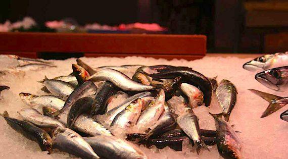 Quins són els beneficis de la sardina?