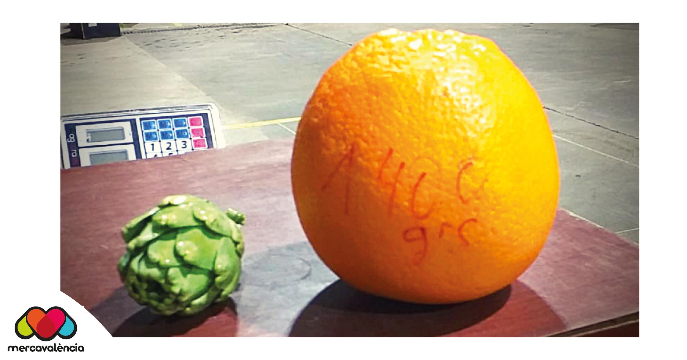 """Mercavalènciaprop delRecordGuinness amb la possible """"taronja més gran del món"""""""