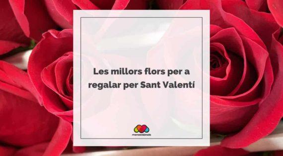 Les millors flors per a regalar per Sant Valentí