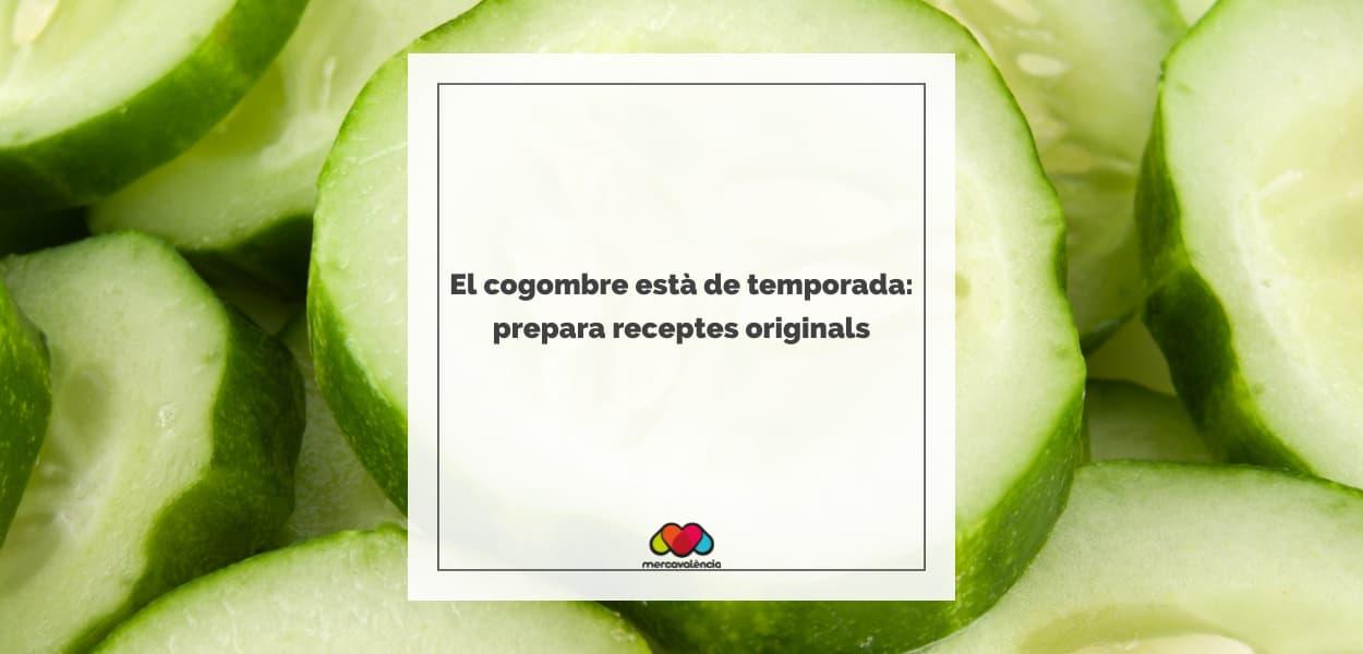 El cogombre està de temporada: prepara receptes originals