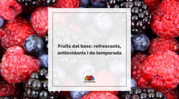 Fruits del bosc: refrescants, antioxidants i de temporada